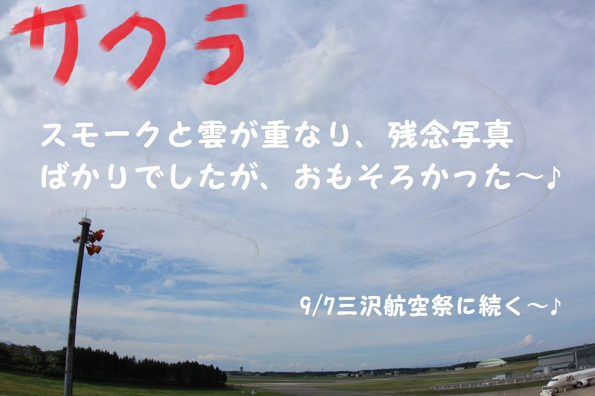 15_201409101943136b6.jpg