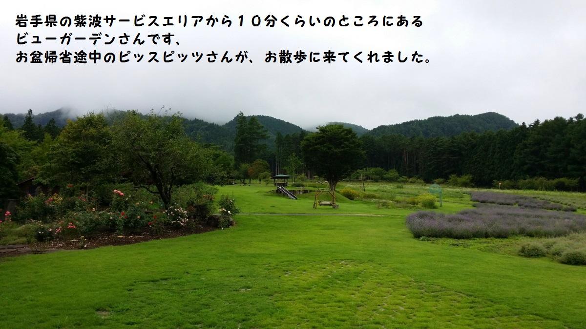 1_20140821183821fdb.jpg