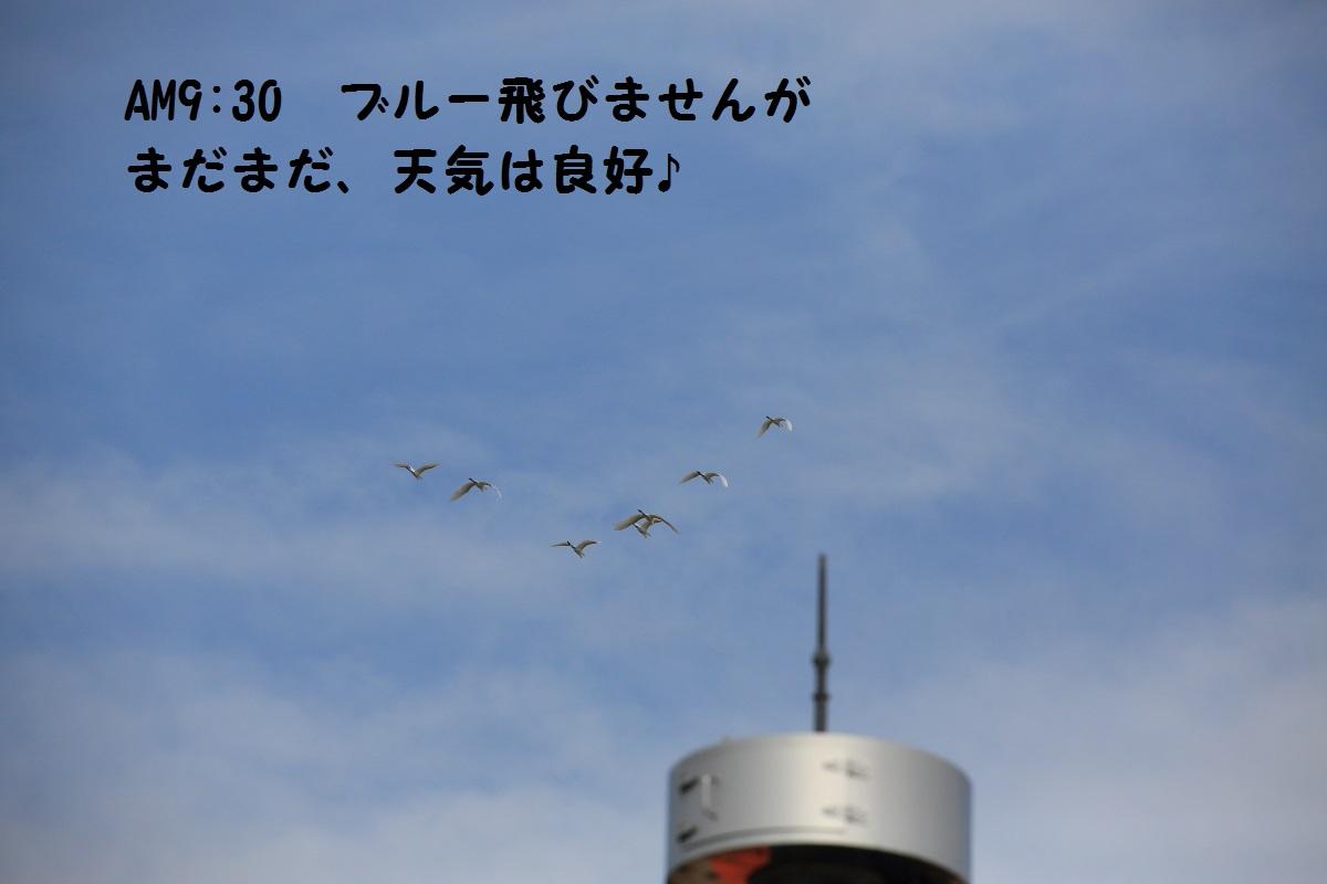 4_20140910194141593.jpg