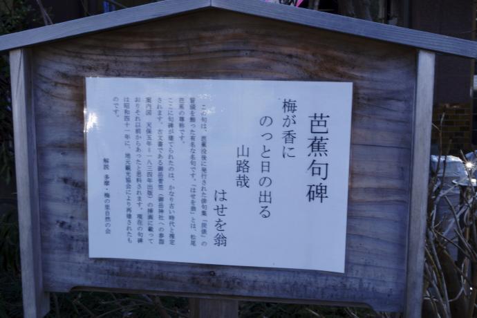 青梅吉野梅郷祭り20140316A