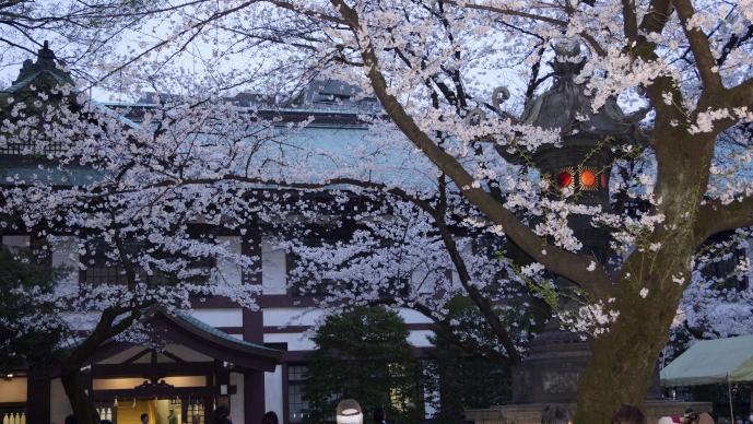 靖国神社&桜20140331-灯籠