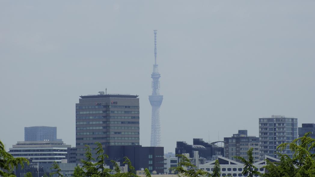 国立競技場から東京スカイツリーを望む