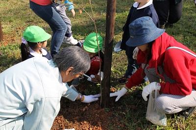 2014年10月08日 マッサン・ミズナラ記念植樹024(400)