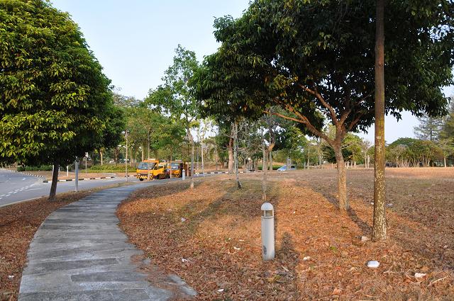 1402singapore (264)