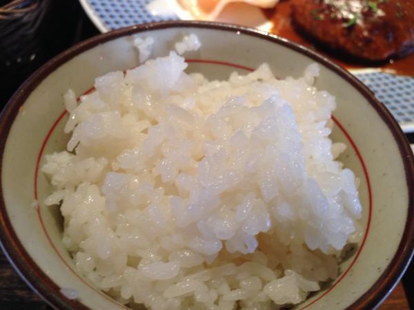 丹原石鎚米の白ごはん10
