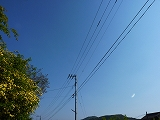 025_20140518074423efd.jpg