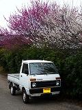 軽トラ022