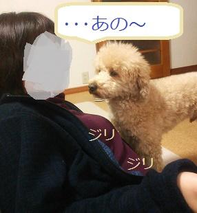 DSC_4609.jpg
