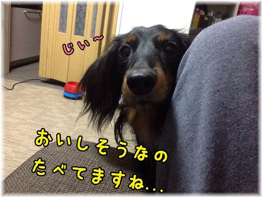 hyoko.jpg