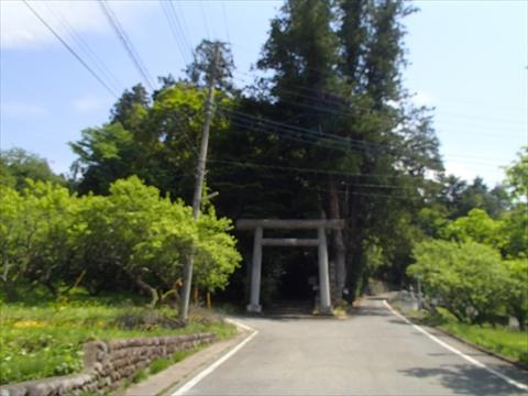S-2P5040032.jpg