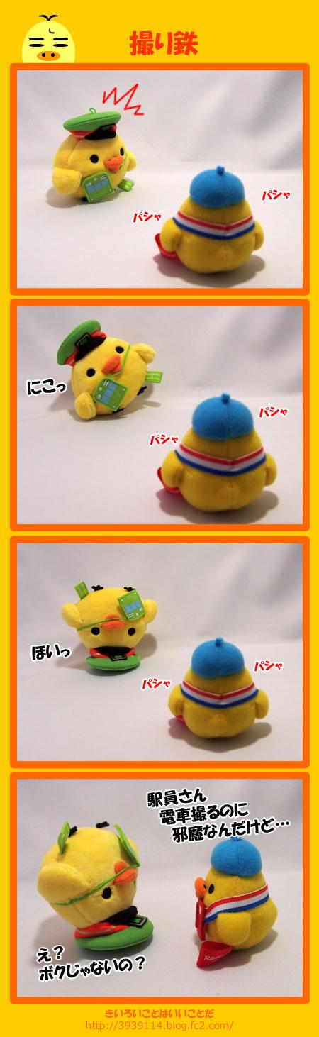 kiiro140524.jpg