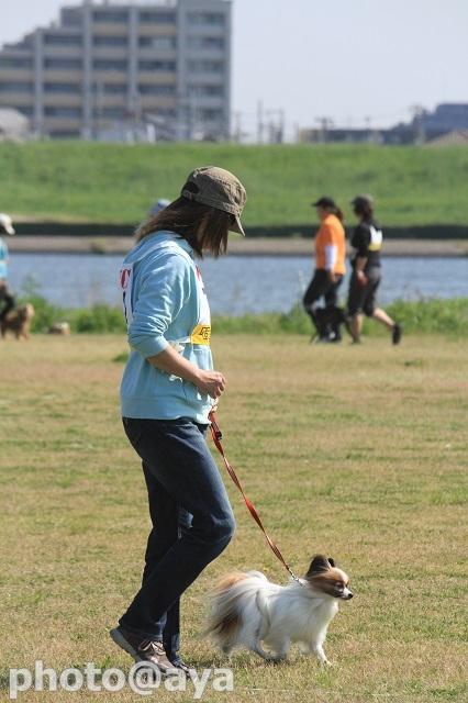 2014年春季訓練競技会 ayaさん004_20140427_018