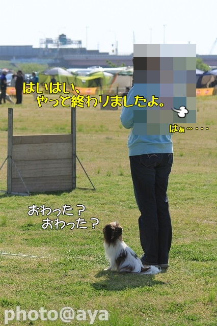 2014年春季訓練競技会 ayaさんダレダレラック025_20140427_087