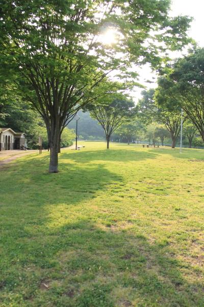 IMG_3835北八朔公園ブログサイズ