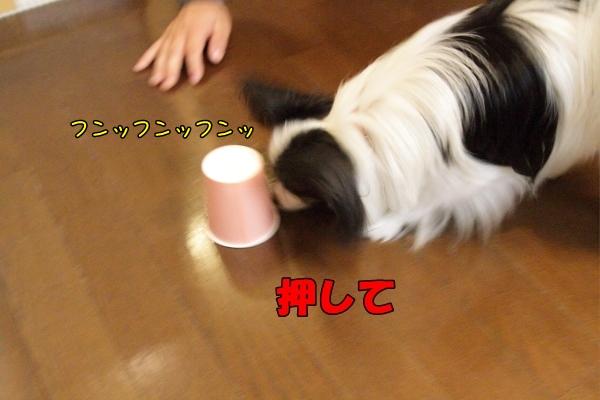 IMG_2272紙コップ遊び紙コップ
