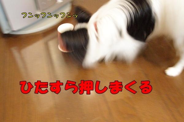 IMG_2274紙コップ遊び紙コップ