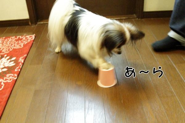 IMG_2288紙コップ遊び紙コップ