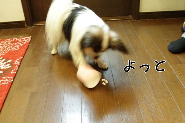 IMG_2289紙コップ遊び紙コップ