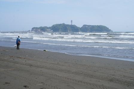 対岸から江の島を望む
