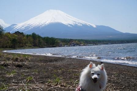 14-05 山中湖BBQ5