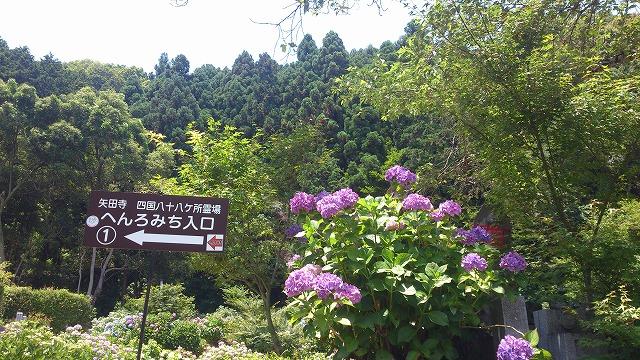 矢田寺へんろみち