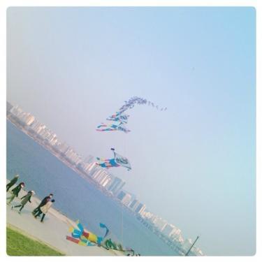 凧上げをしている家族、カップルも。