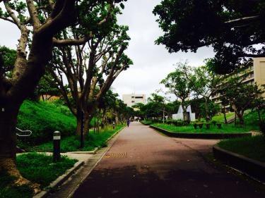 琉球大学のキャンパス内にて。