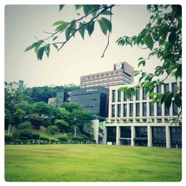成均館大学の夏の風景。木陰に入ると暑さをや和らげてくれます。