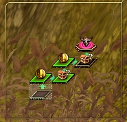 ピンドス葦畑2