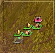 ピンドス葦畑4