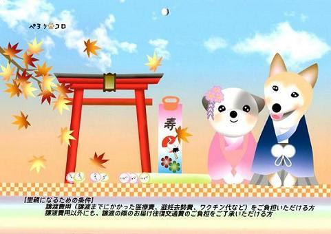 ぺろままカレンダー 201411