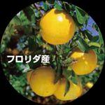 photo_20140401_A.jpg
