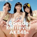 AKB48 ラブラドール・レトリバー セクシー ジャケット写真 渡辺麻友 松井珠理奈 指原莉乃 ビキニ水着 おっぱいの谷間 カメラ目線 裸足の裏 高画質エロかわいい画像2