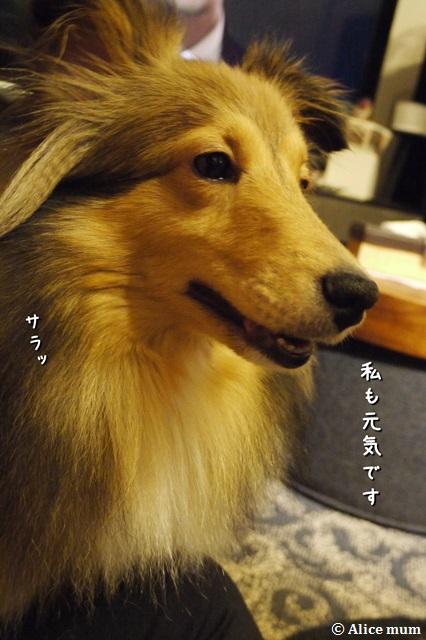 3_2014053000531043a.jpg