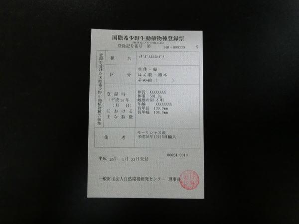 2013-2-16 008