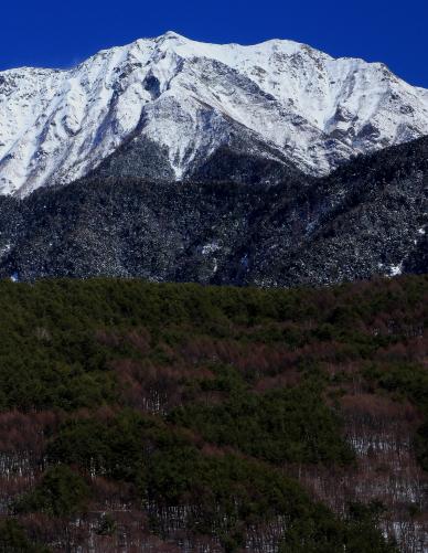 仙丈ヶ岳・タテ