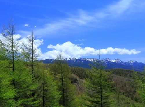 萌える若葉と残雪の八ヶ岳
