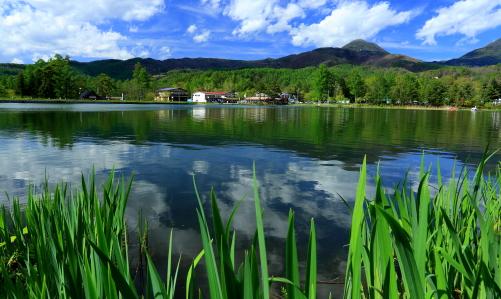 芽吹き鮮やかな蓼科湖