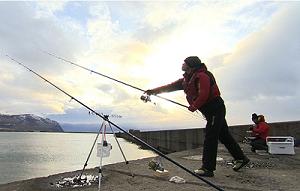 釣り百景300