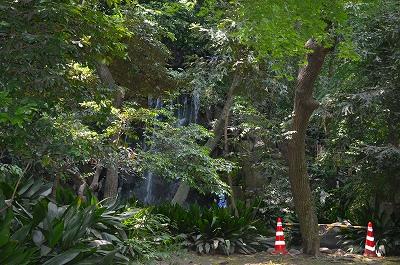 王子親水公園 名主の滝 021