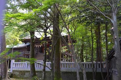 尾山神社 024