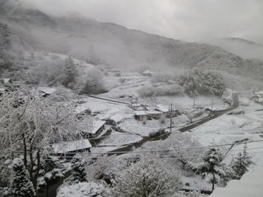4月6日(日):雪の朝