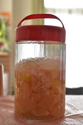 果実酒-036