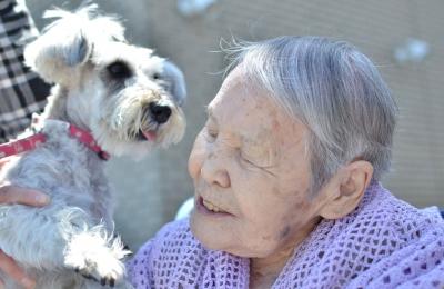 ロッタとおばあちゃん