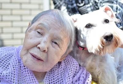 めいじゅとおばあちゃん