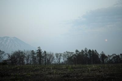 niseko-065.jpg
