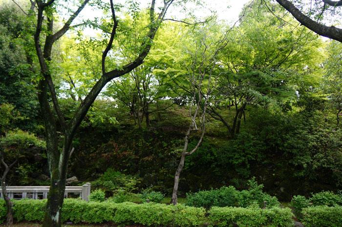 14-5-1-yomiuri-016.jpg