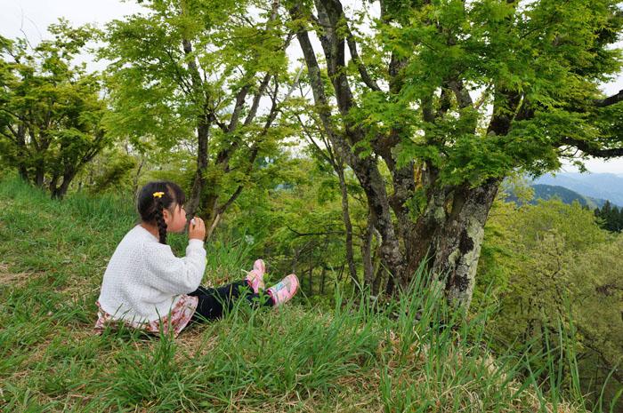 14-5-11-jinba-010.jpg