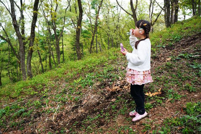 14-5-11-jinba-011.jpg