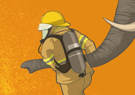 elephant2_web.jpg